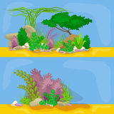 Satz lokalisierte bunte Korallen und Algen, Vektorunterwasserflora, Fauna Stockfotos