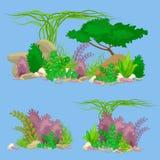 Satz lokalisierte bunte Korallen und Algen, Vektorunterwasserflora, Fauna Lizenzfreie Stockfotografie