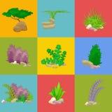 Satz lokalisierte bunte Korallen und Algen, Vektorunterwasserflora, Fauna Lizenzfreies Stockfoto