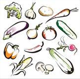 Satz lokalisierte Gemüseikonen Lizenzfreie Stockfotos