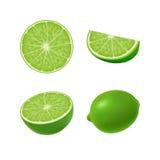 Satz lokalisierter farbiger grüner Kalk, halb, Scheibe, Kreis und ganze saftige Frucht auf weißem Hintergrund Realistische Zitrus Stockbild