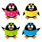 Satz lustige Pinguine Lizenzfreies Stockfoto