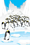 Satz lustige Pinguine Lizenzfreies Stockbild