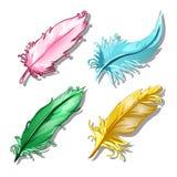 Satz mehrfarbige Federn Einige Federn von exotischen Vögeln Vector die Illustration in der Karikaturart lokalisiert auf Weiß Lizenzfreies Stockfoto
