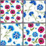 Satz Muster von Kornblumen und von Mohnblumen Lizenzfreies Stockfoto
