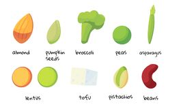 Satz Nahrungsmittel hoch im Protein Protein des strengen Vegetariers ist eine Ressource stock abbildung