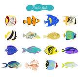 Satz nette exotische Fische auf weißem Hintergrund vektor abbildung