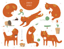 Satz nette flippige Ingwerkatzen, lokalisiert auf Weiß, Spaß, stilvoll Vector Illustration mit Katzenzubehör - Lebensmittel, Spie Stockbilder