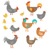 Satz nette Hühner Stockbilder