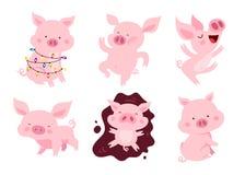 Satz nette rosa Schweine Stockfotos