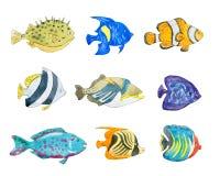 Satz nette tropische Fische auf weißem Hintergrund lizenzfreie abbildung