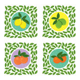 Satz neue saftige Fruchtikonen Stockbild