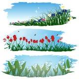 Satz Pinselstrichblumenrahmen Stockfotos