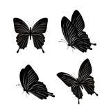 Satz realistische bunte Schmetterlinge lokalisiert für Frühling Lizenzfreie Stockfotos