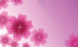 Satz rosa Blumen auf Hintergrund mit Musik zeichnet Lizenzfreie Stockfotografie