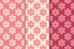 Satz rote Blumenverzierungen Kirschrosa vertikale nahtlose Muster Stockbild