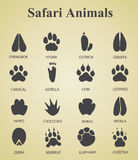 Satz Safaritierbahnen Stockbilder