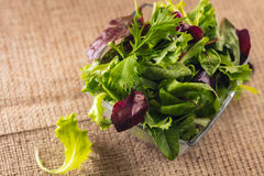 Satz Salatblätter stockbild