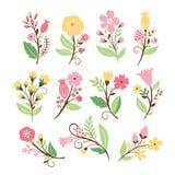 Satz Schönheitsblumensträuße Stockbilder