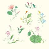 Satz Schönheitsblumensträuße Stockbild