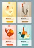 Satz Schablonen mit Huhn für Webdesign Stockfoto