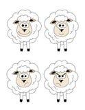 Satz Schafe Stockbild
