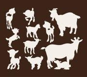 Satz Schattenbildbilder von Ziegen Stockfotografie