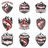 Satz Schmutzausweise mit Lachsfischen Gestaltungselemente für Logo, vektor abbildung