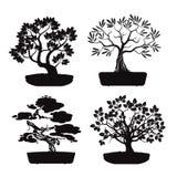 Satz schwarze Bonsai-Bäume Lizenzfreie Stockfotografie