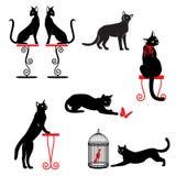 Satz schwarze Katzen mit grünen Augen und rotem Zubehör Stockbilder