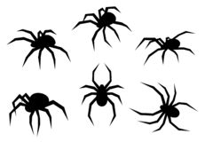 Satz schwarze Schattenbildspinnen Insekten lokalisiert auf weißem Hintergrund Auch im corel abgehobenen Betrag lizenzfreies stockbild