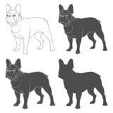Satz Schwarzweiss-Bilder einer französischen Bulldogge Lokalisierte Vektorgegenstände lizenzfreie abbildung