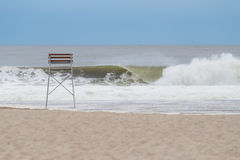 Satz Seemöwen auf dem Strand Lizenzfreies Stockfoto