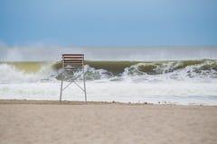 Satz Seemöwen auf dem Strand Stockbilder