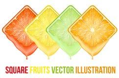 Satz sliceswith Früchte der Ikonen quadratisches frischer Saft Stockbild