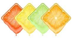 Satz sliceswith Früchte der Ikonen quadratisches frischer Saft Lizenzfreie Stockbilder