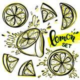 Satz stilisierte Hand gezeichnete Zitronen Stockfotos