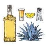 Satz Tequilaflasche, Schuss, Salzmühle, Agave und Kalk stock abbildung