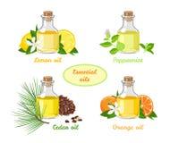 Satz ?therische ?le Zitrone, Minze, Orange, aromatisches Öl der Zeder in den Glasflaschen lizenzfreie abbildung