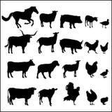Satz Tierschattenbilder Lizenzfreies Stockbild