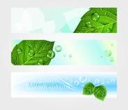 Satz Titel für Website mit Laub, Vektor Lizenzfreies Stockfoto