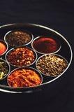 Satz traditionelle indische Gewürze im Metall rollt auf schwarzem Hintergrund Stockfotografie