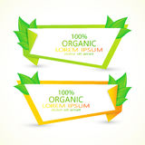 Satz Vektorfahnen mit frischen grünen Blättern eco Stockbilder
