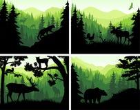 Satz Vektorgebirgswaldtierschattenbilder in den Sonnenuntergangschablonen Stockfoto