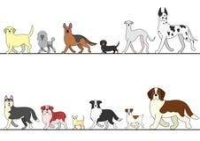 Satz verschiedene Hunde, die in Linie gehen Stockfotos