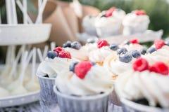 Satz verschiedene köstliche geschmackvolle Muffins mit Beeren auf Sommerhintergrund Verschiedene Nachtisch Tartlets mit Sahne und Stockfotos