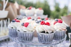 Satz verschiedene köstliche geschmackvolle Muffins mit Beeren auf Sommerhintergrund Verschiedene Nachtisch Tartlets mit Sahne und Stockfoto
