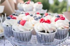 Satz verschiedene köstliche geschmackvolle Muffins mit Beeren auf Sommerhintergrund Verschiedene Nachtisch Tartlets mit Sahne und Lizenzfreie Stockfotos