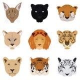 Satz von Cat Tiger und Lion Vector und Ikone Lizenzfreies Stockbild