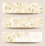 Satz von drei Fahnen mit weißen Rosen. Lizenzfreie Stockfotos